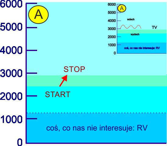 aerozoloterapia efektywność wykorzystania TV