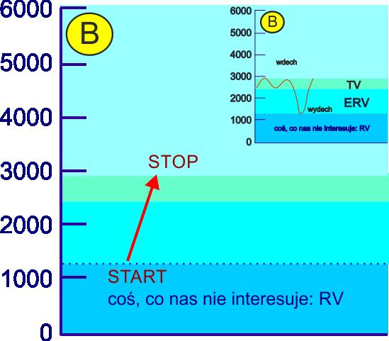 aerozoloterapia efektywność inhalacji objętościa TV pogłębioną wydechem