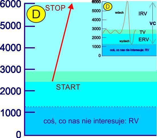 aerozoloterapia efektywność inhalaccji pojemnością VC inicjowana wdechem